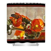 Bee On Red Flower 4 Shower Curtain
