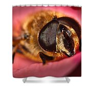 Bee On Rose Petal Shower Curtain