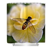 Bee On Yellow Flower Shower Curtain