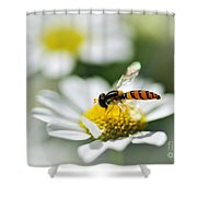 Bee With Rainbow Wings Shower Curtain