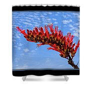Bee With Red Flower 1 Shower Curtain