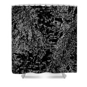 Beech Tree Digital Art Shower Curtain