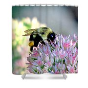 Bees Knees Shower Curtain