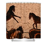 Before The Herd Shower Curtain