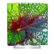 Begonia Leaf Shower Curtain