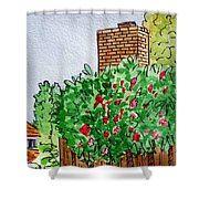 Behind The Fence Sketchbook Project Down My Street Shower Curtain