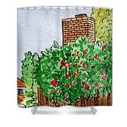 Behind The Fence Sketchbook Project Down My Street Shower Curtain by Irina Sztukowski