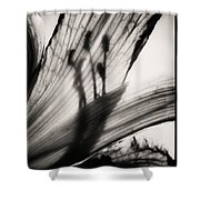 Behind The Petals Black And White Shower Curtain