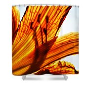 Behind The Petals Shower Curtain