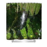 Bein' Green Shower Curtain