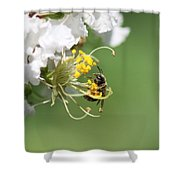 Being A Bee Shower Curtain