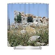 Beitin Tower Shower Curtain