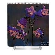 Bellflower Shower Curtain