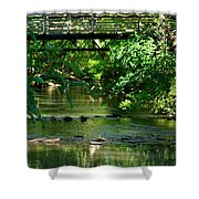 Below The Bridge Is Another World Shower Curtain