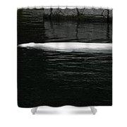 Beluga Impressions 1 Shower Curtain