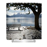 Bench And Tree On The Lakefront Shower Curtain