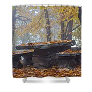 Benches And Table In Autumn Shower Curtain