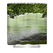 Bent Twig 4 Shower Curtain
