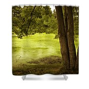 Bent Twig 5 Shower Curtain