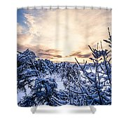 Bergen Winter Shower Curtain