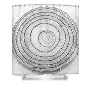 Bermuda Onion Spiral Bw Shower Curtain