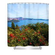 Berries And The Wizard Shower Curtain