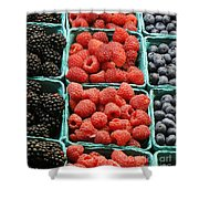 Berry Baskets Shower Curtain