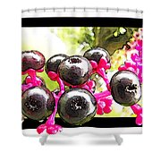 Berry Burst   Poke Berries Shower Curtain