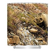 Berry Sniffer Shower Curtain
