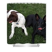 Best Of Friends Shower Curtain by Donna Parlow