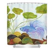 Blue Betta 1 Shower Curtain
