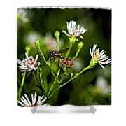 Between Jobs Shower Curtain