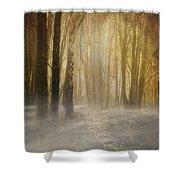Beware Misty Woodland Path Shower Curtain