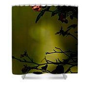Beyond The Rose Shower Curtain