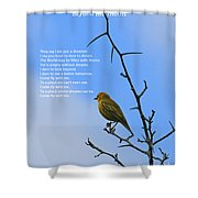 Beyond The Thorns Shower Curtain