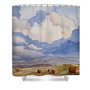 Big Alberta Sky Shower Curtain