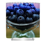 Big Bowl Of Blueberries Shower Curtain