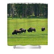 Big Boy Meadow Shower Curtain