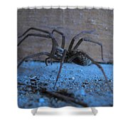 Big Brown Spider Shower Curtain
