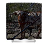 Big Bull Long Horn Shower Curtain