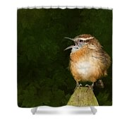 Big Mouth  Shower Curtain