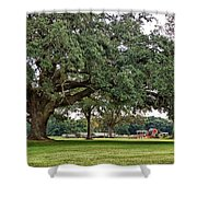 Big Oak And The Tractors Shower Curtain
