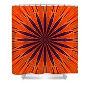 Big Orange Shower Curtain