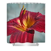 Big Red II Shower Curtain