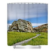 Big Rock Shower Curtain