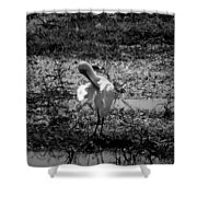 Billabong V5 Shower Curtain