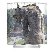 Biltmore Gargoyle Shower Curtain