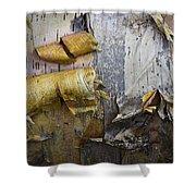 Birch Tree Bark No.0863 Shower Curtain