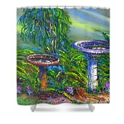 Bird Baths Shower Curtain