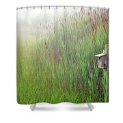 Bird House In Quogue Wildlife Preserve Shower Curtain